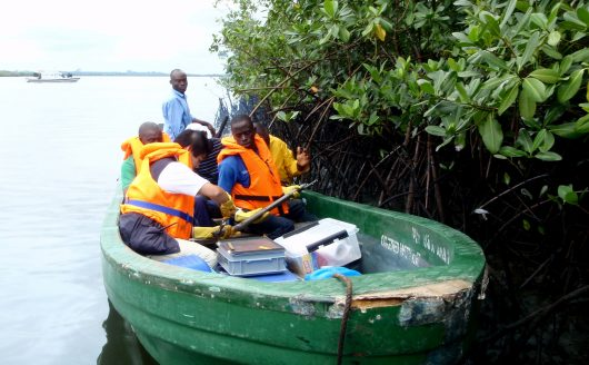 UNEP welcomes Nigerian Government's green light for Ogoniland oil clean-up