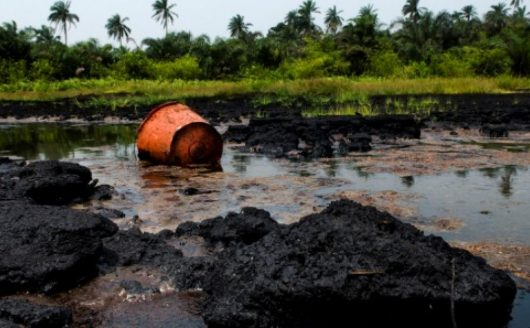 Large scale clean-up of oil pollution in Ogoniland discussed in Abuja