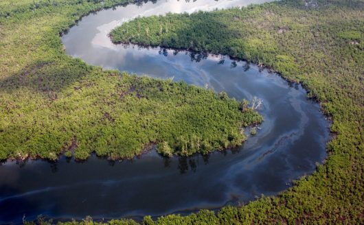 Progress towards Ogoniland clean-up following Geneva talks